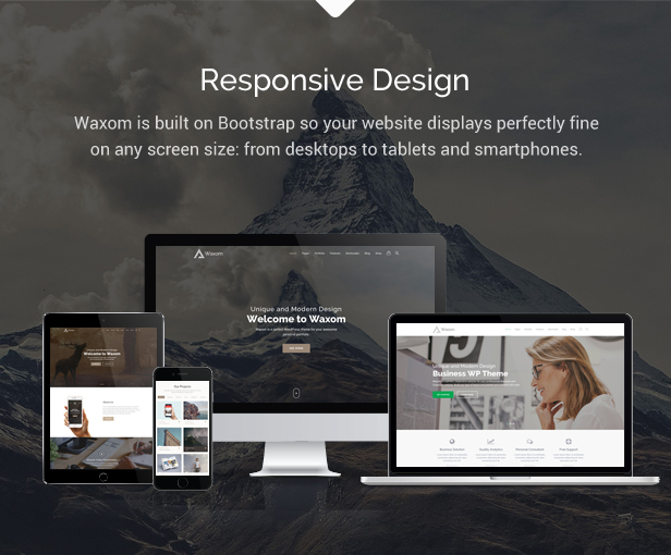 Waxom - Clean & Universal WordPress Theme - 2